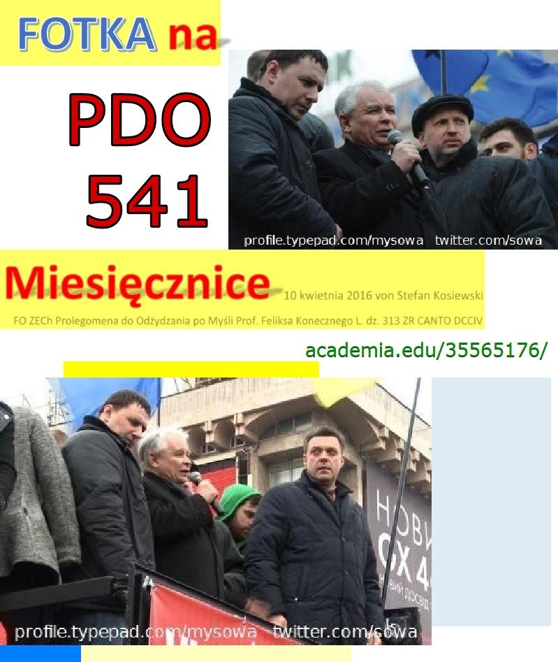 Fotka_na_miesiecznice_sowa pdo541