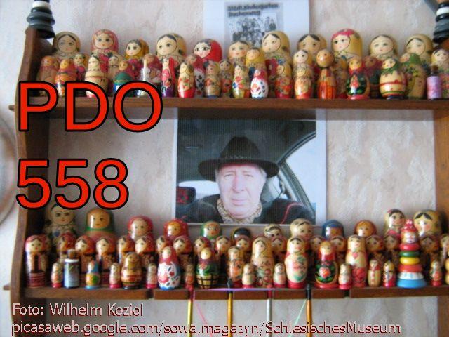Matrioszkin pdo558