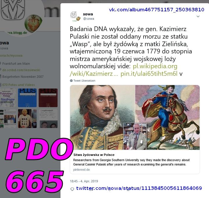 """Screenshot_2019-04-04 sowa auf Twitter Badania DNA wykazały  że gen Kazimierz Pulaski nie został oddany morzu ze statku """"Wa[...]"""